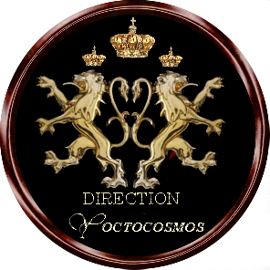 logo officiel direction Yoctocosmos